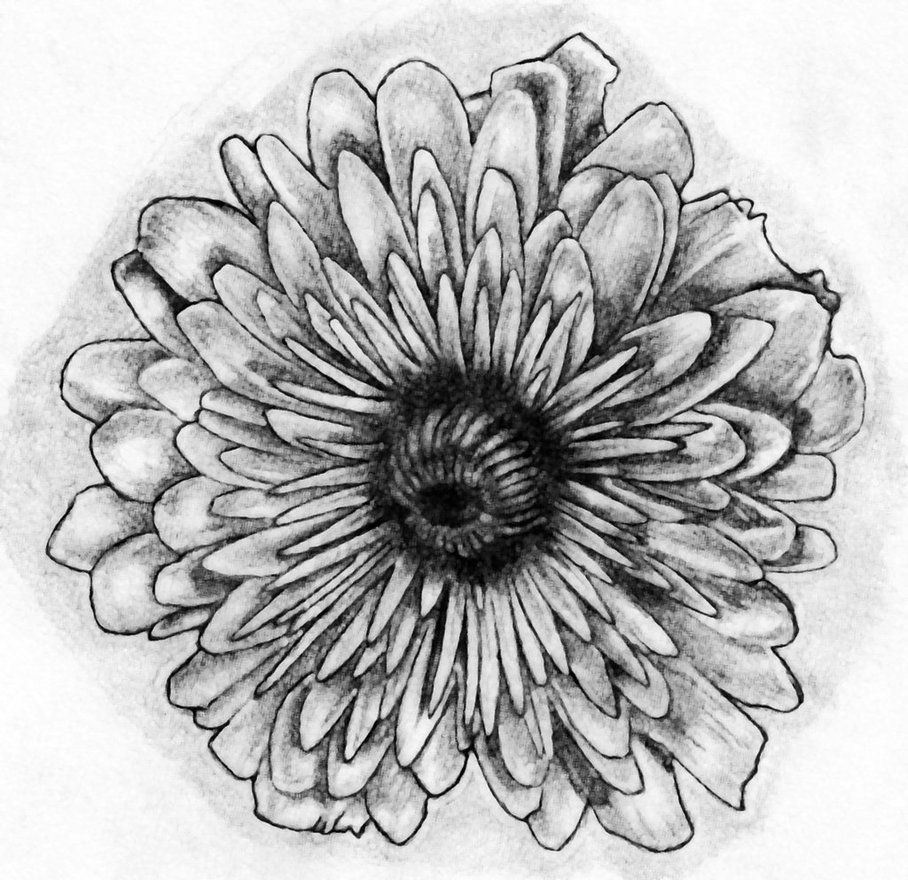 November flower tattoo art by bobby castaldi art on for Birth flower october tattoo