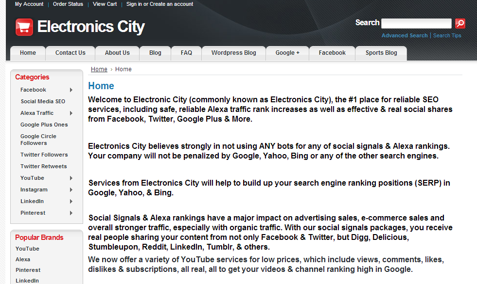 Http Www Electronics City Com Seo Services From Electronics