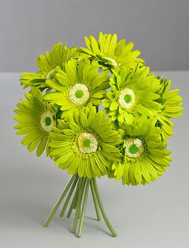 Lime green gerbera gerber daisy bridal bouquet silk wedding lime green gerbera gerber daisy bridal bouquet silk wedding flowers decor mightylinksfo Images