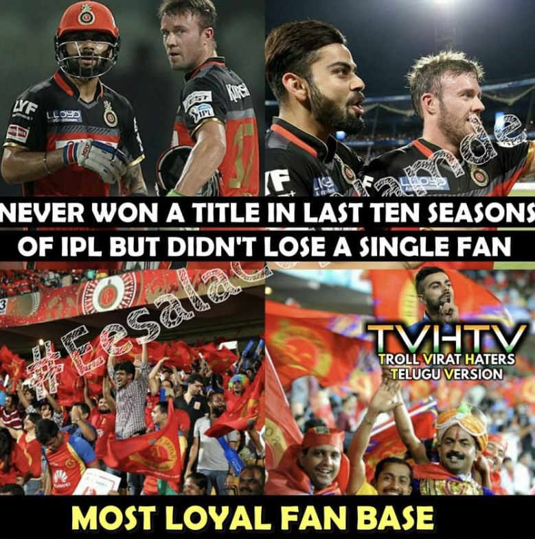 Very Funny Memes Royal Challengers Bangalore Funny Memes