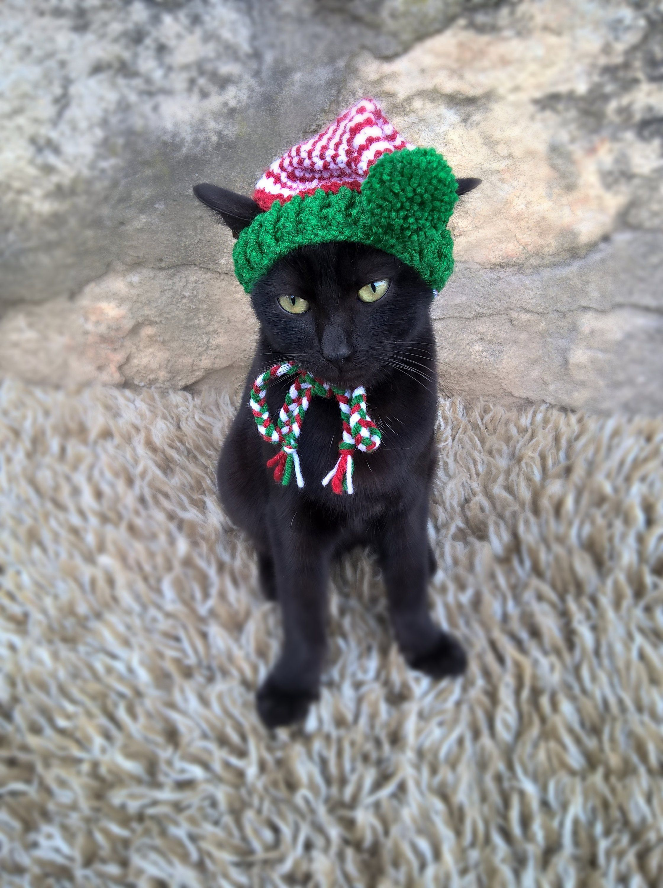 Elf Hat for Cats Cat Elf Costume Christmas Hat for Cat