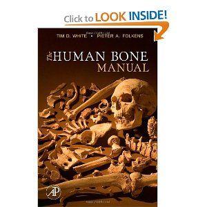 Pin By Kristen Rowe On Skeletal Stuff Forensic Anthropology Forensics Anthropology