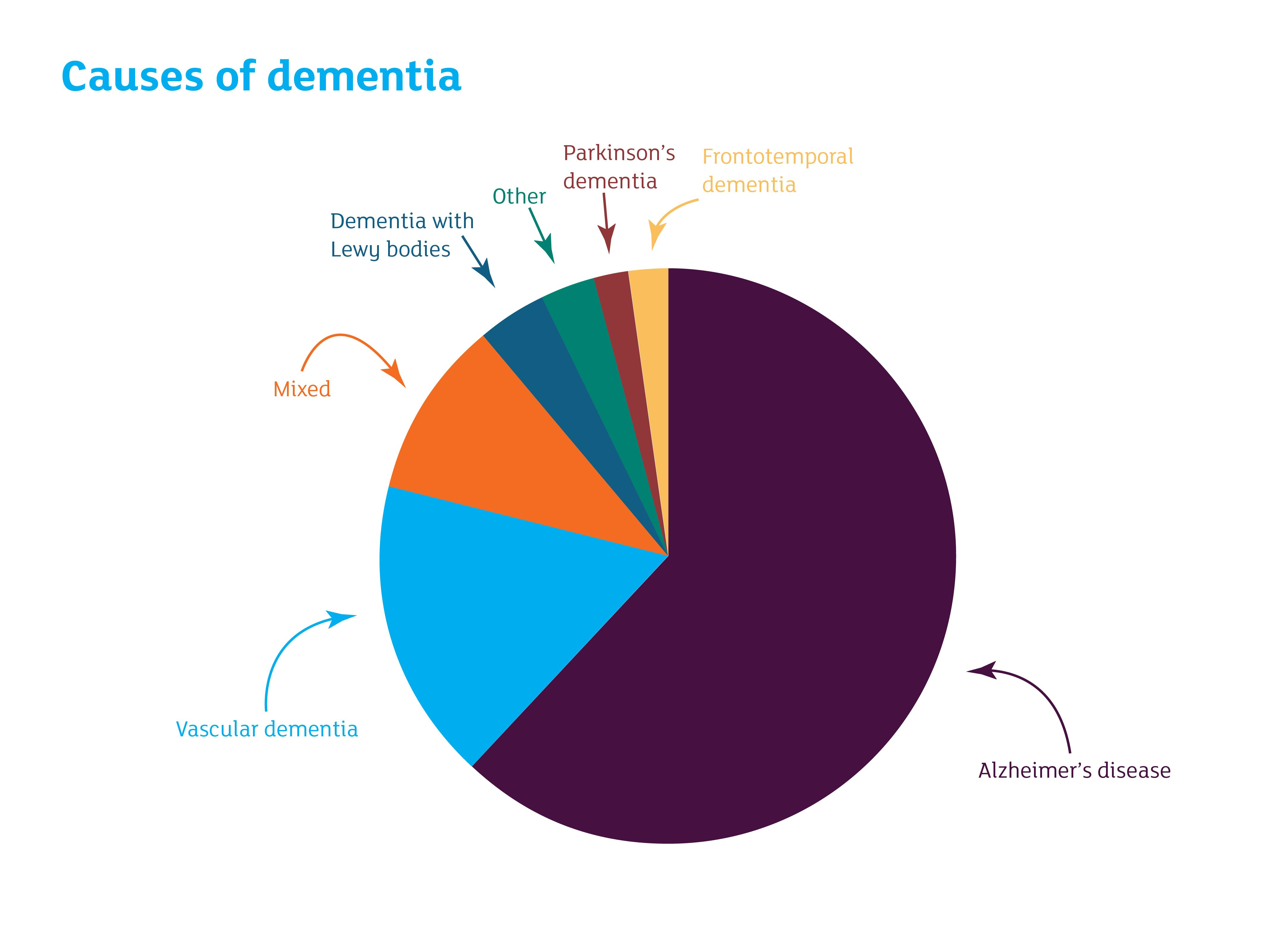 Dementia-pie-chart Dementia And Frail Elderly