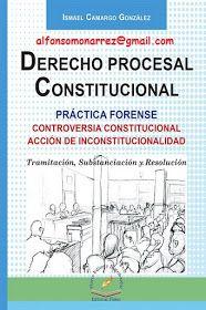 sagues derecho procesal constitucional descargar