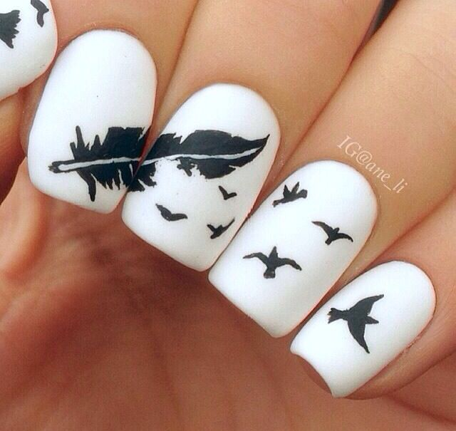 Feather and birds nail | Beauty | Pinterest | Feathers, Bird and ...