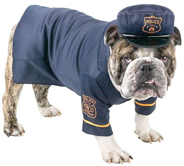 K-9 Police Dog Costume - Dog Costumes  sc 1 st  Pinterest & K-9 Police Dog Costume - Dog Costumes   Heroes in Blue   Pinterest ...
