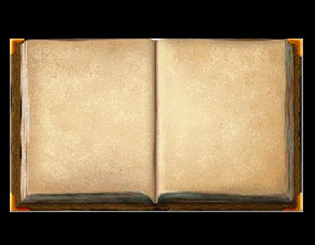 Livre Vierge En 2019 Livre Vierge Livre Et Parchemin