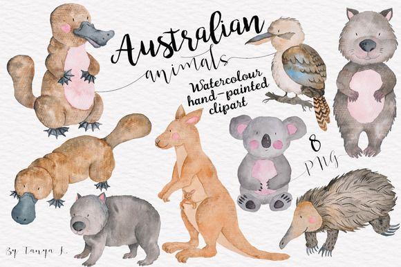 Australian Animals Watercolor Set Cute Animal Clipart Animal Clipart Australian Animals