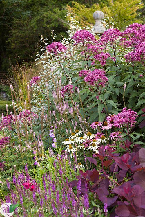 Bodnant Gardens - Shrub and Perennial Border | Joe Wainwright Photography