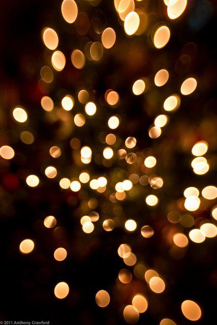 Christmas Lights Lights Bokeh Photography Bokeh