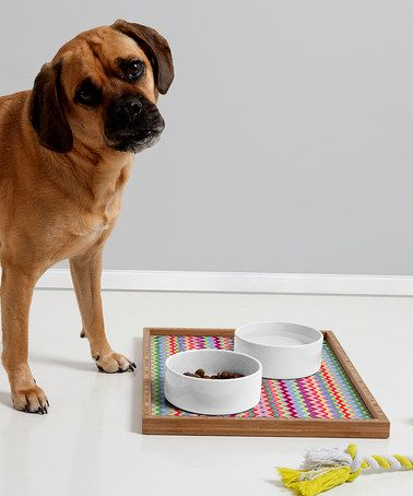 This Amy Sia Chevron Pet Tray is perfect! #zulilyfinds