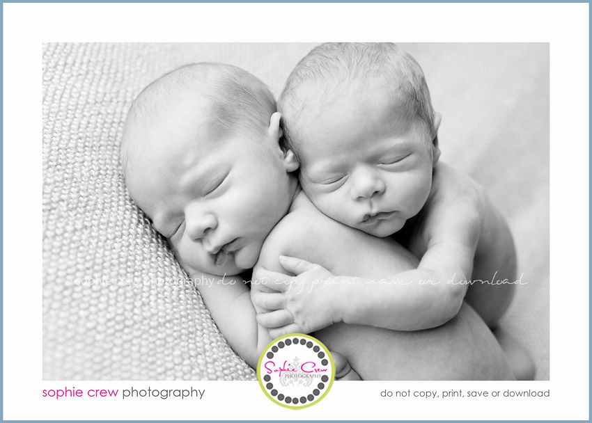 San diego twin multiples newborn photographer infant photography for baby twins triplets professional photographer