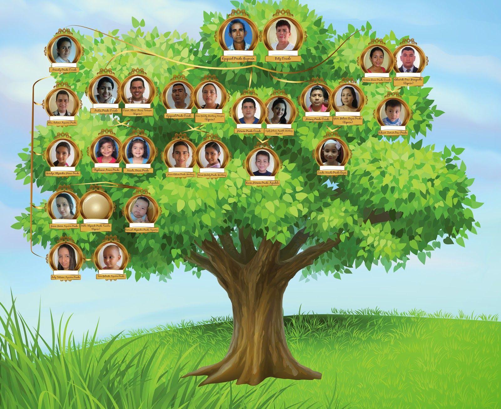 Resultado De Imagen De Arbol Genealogico De Tu Familia Arbol Genealogico Arboles