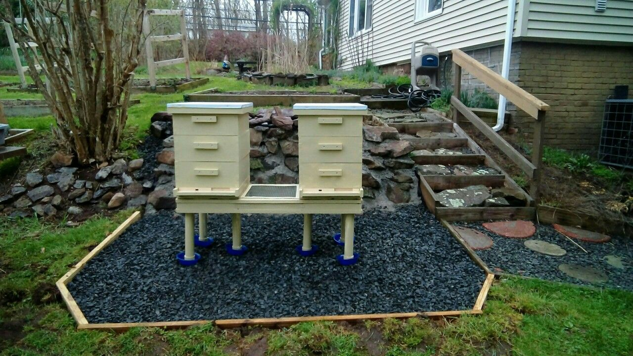 My finished Bee yard or Apiary as the Pro's call it..