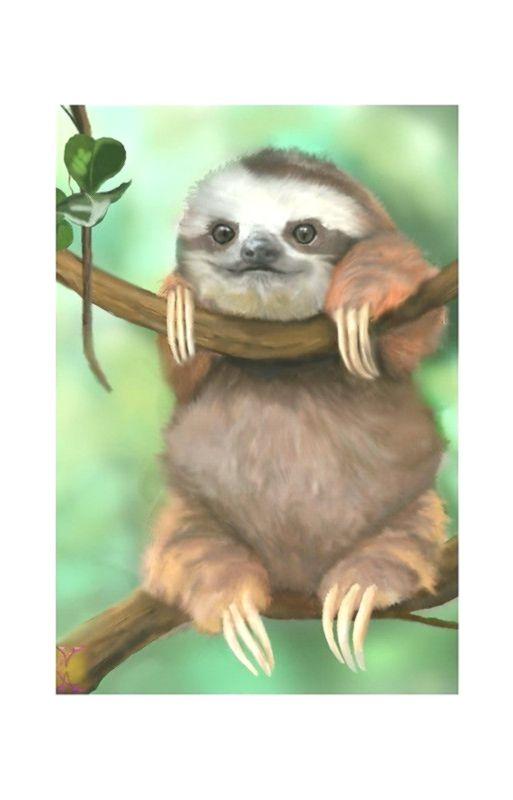 Baby Sloth #babysloth
