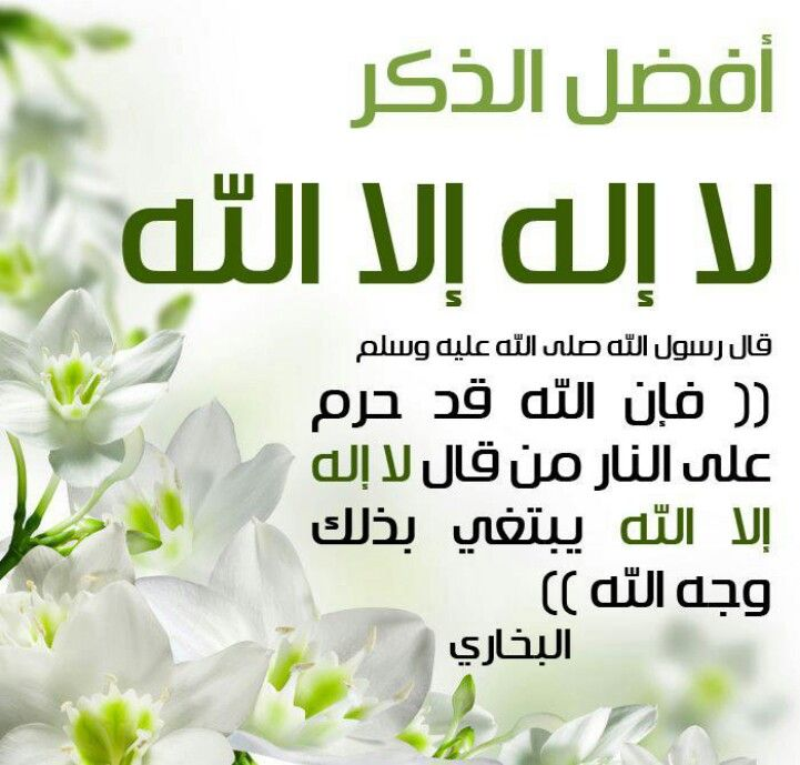 لا اله الا الله Quran Quotes Love Little Prayer Salaah