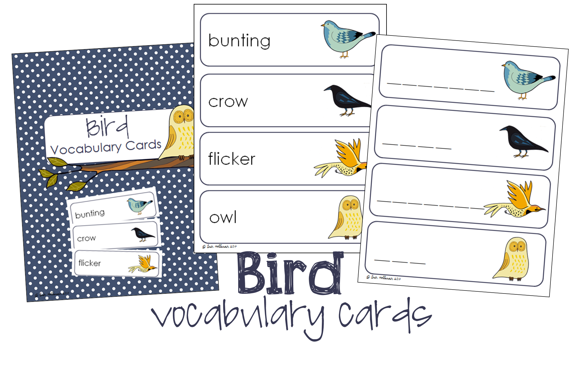 Bird Vocabulary Cards