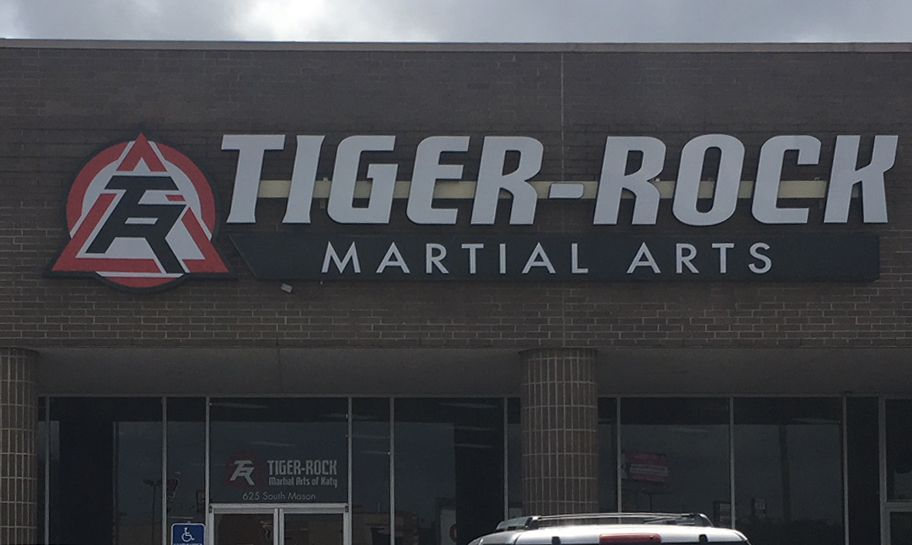 41++ Tiger martial arts katy ideas in 2021