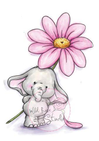 Bella with daisy pinteres - Babyzimmer bella ...