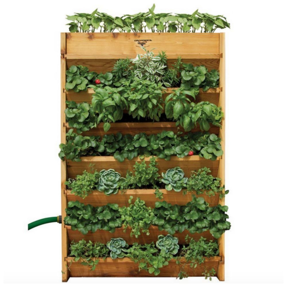 Large Outdoor Tall Vertical Living Wall Garden Planter Pot Plant Flower  Wood Box