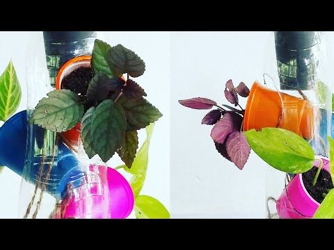 Self Watering System for Plants Using Waste Plastic Bottle | Self Watering Tree Pot//GREEN PLANTS - YouTube #selfwatering