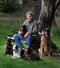 Canyon Crest K9 Dog Training Center And Boarding Near Tacoma Dome