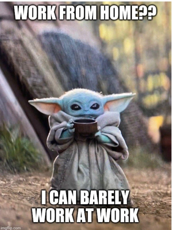 Pin by Lisa King on Baby Yoda in 2020 Yoda funny, Yoda