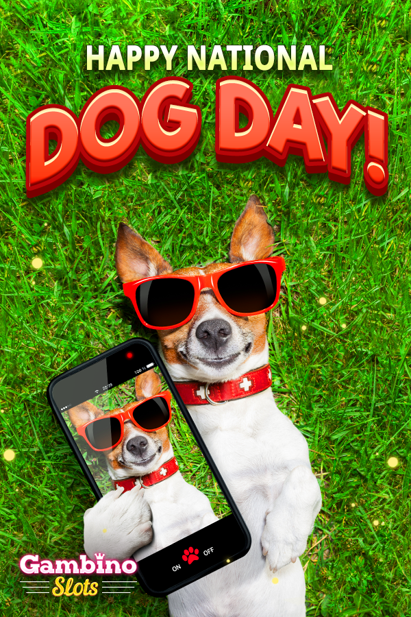 Dog lovers unite! Have a howling good time as you