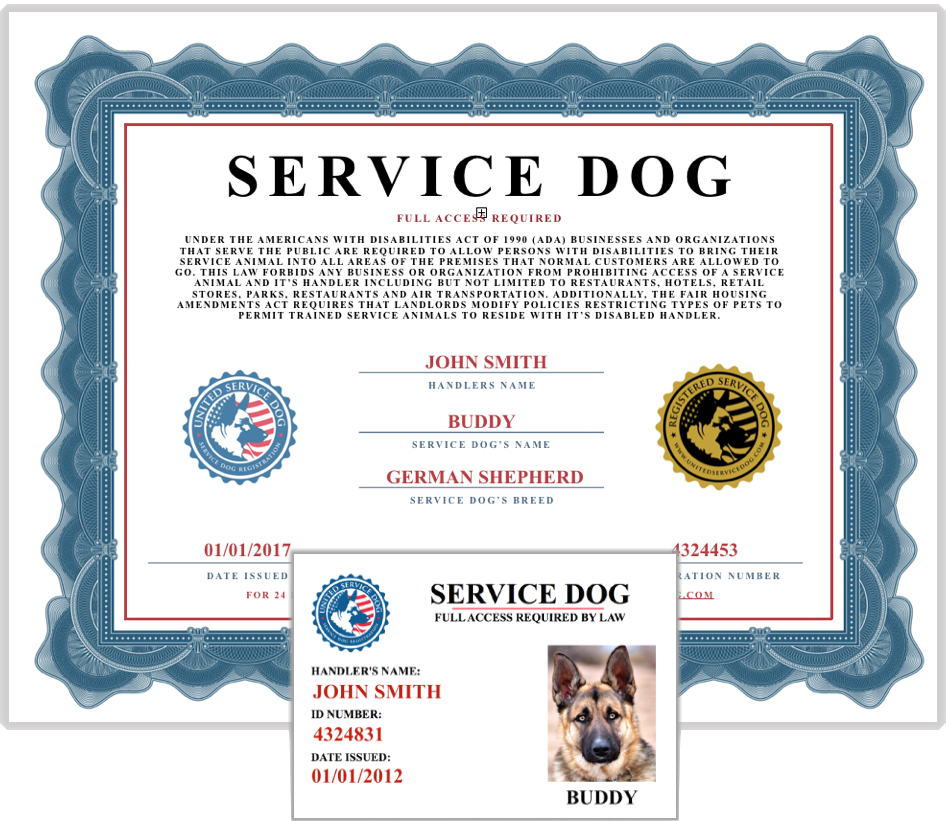 service dogs verification | united service dog | pinterest | service ...