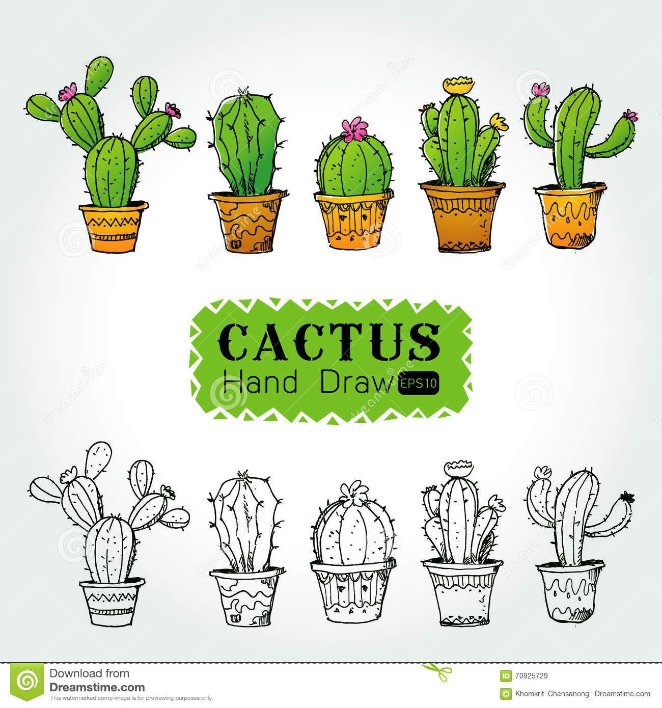 cactus dibujo - Buscar con Google | Cactus ideas | Pinterest ...