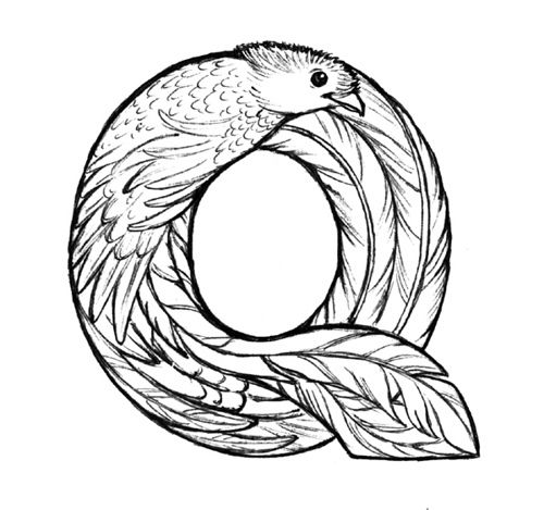 Quetzal B W Coloring Pages Art Drawings