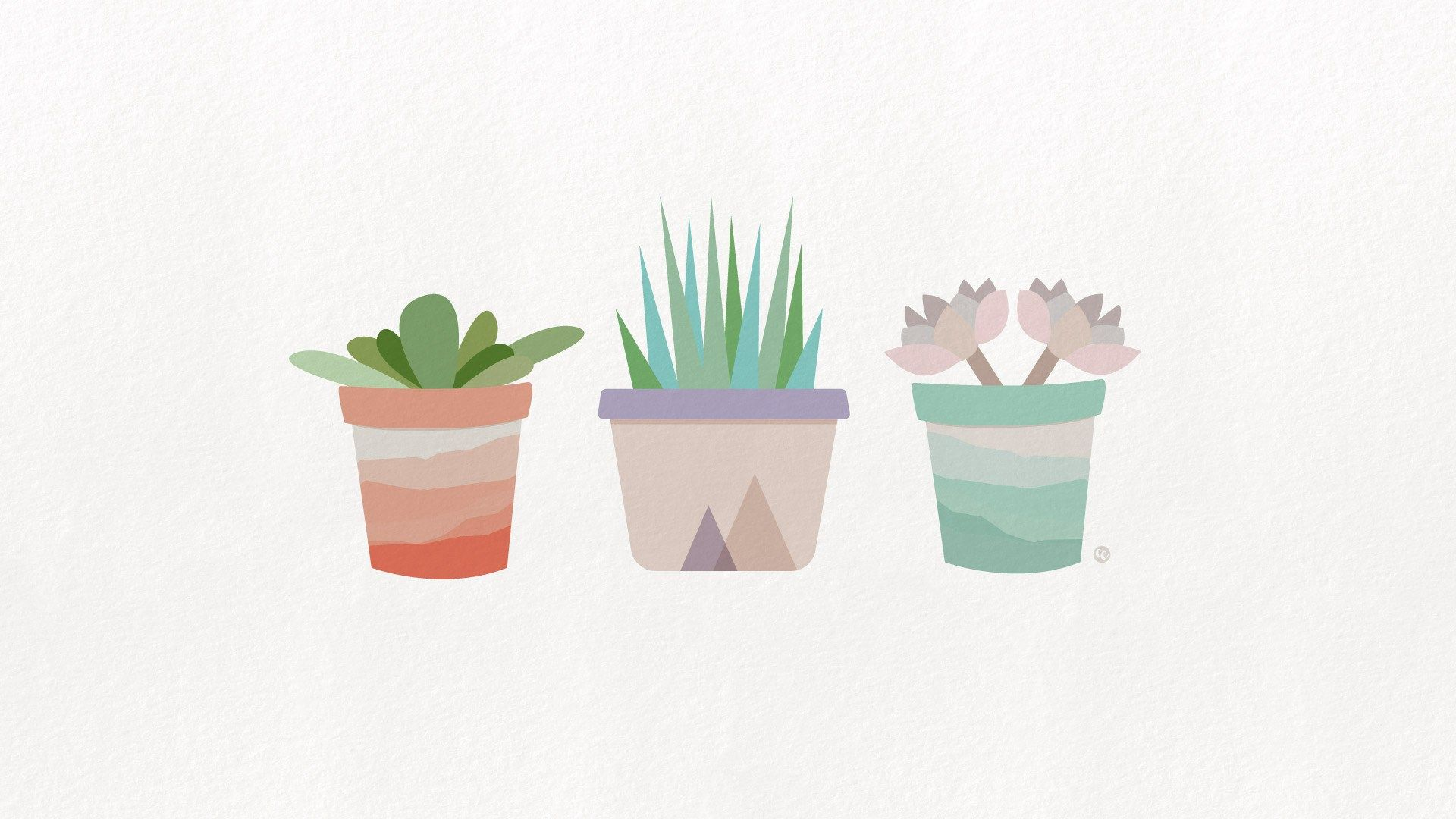 Free Desktop And Mobile Wallpapers Iphone Minimalist Wallpaper Succulents Wallpaper Minimalist Wallpaper
