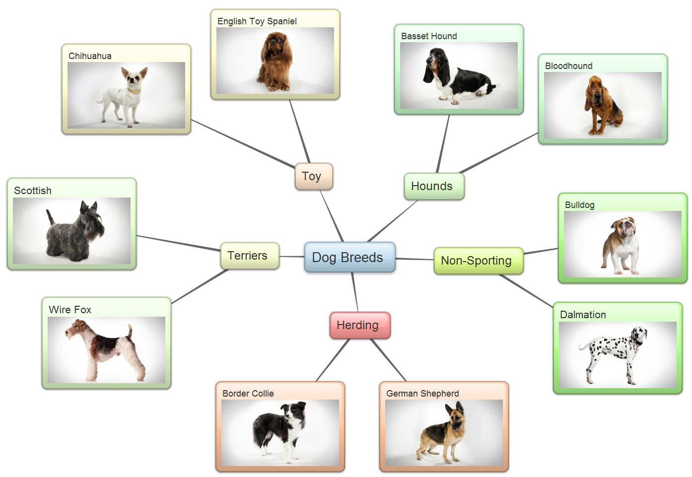 Examples Of Mind Maps Created Using Bubblus Brainstorming - Us map software