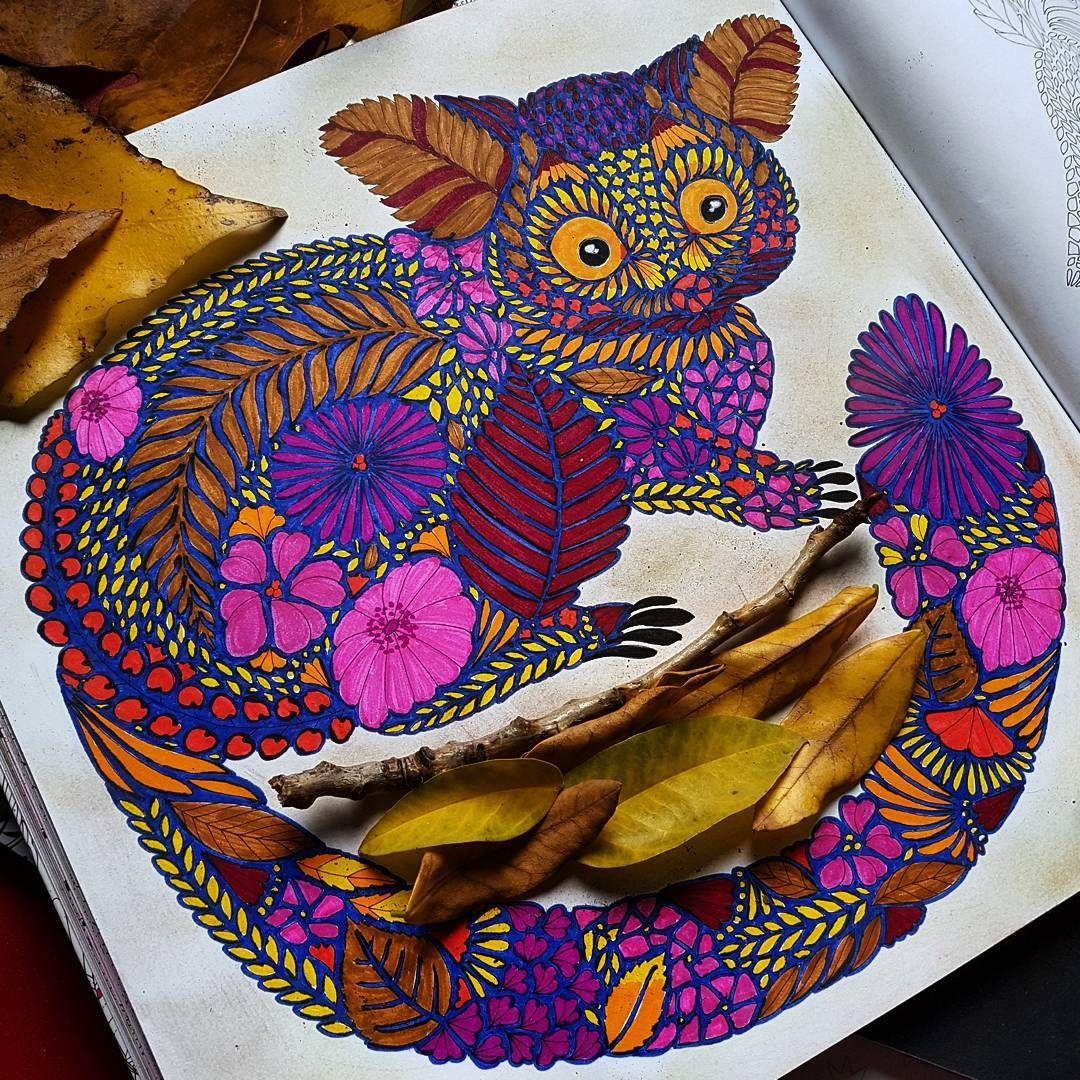 Beautiful #autumn with @milliemarotta #tropicalwonderland #paraisotropical #milliemarottabooks #milliemarottafans #animal #nature #otoño #milliemarotta #coloringbooks