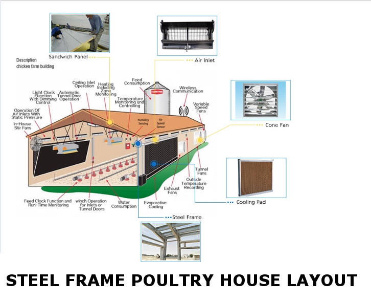 Poultry House Design Layout - steel structure: wall, roof panels
