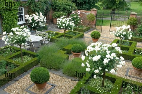 Harpur Garden Images :: ousden149 Formal courtyard garden parterre of low Box Buxus hedge symmetry symmetrical box ball sphere container white standard Roses Rosa table chairs furniture dine dining entertain metal gate gravel and brick path paving overview from above Mrs and Mrs Alistair Robinson Ousden House, Nr Newmarket, Suffolk UK Marcus Harpur