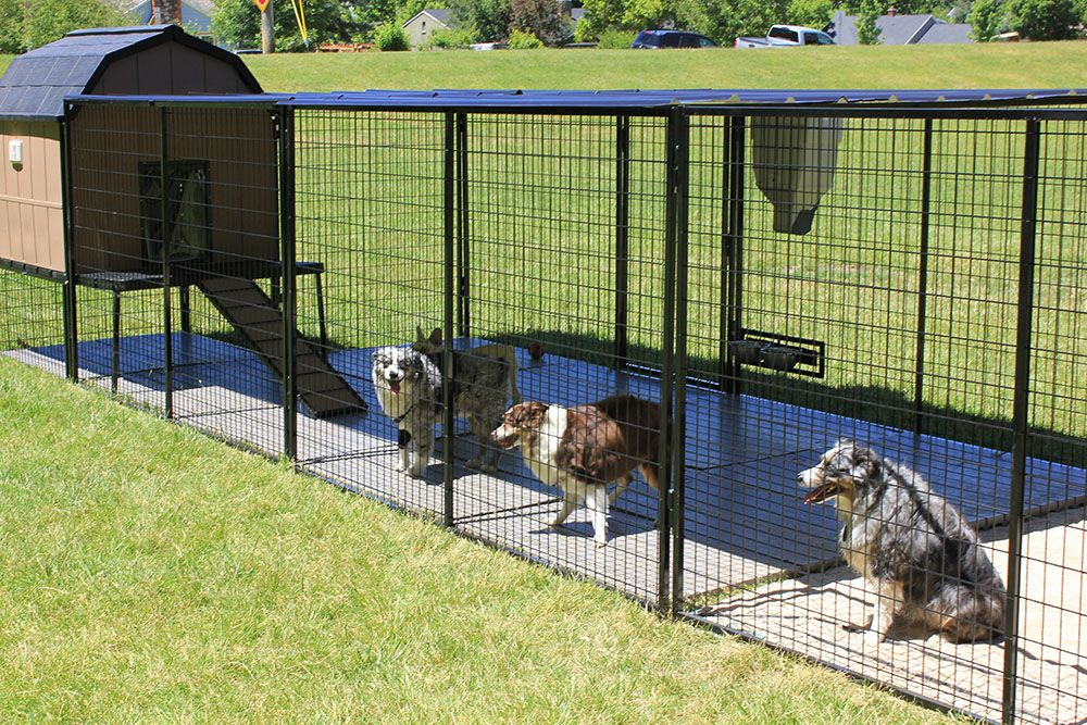 The Ultimate Is Loaded It Includes The Kennel Castle 1 4 Ramp Porch Run And Roof To Cover The Porch A Wooden Dog Kennels Dog Kennel Portable Dog Kennels