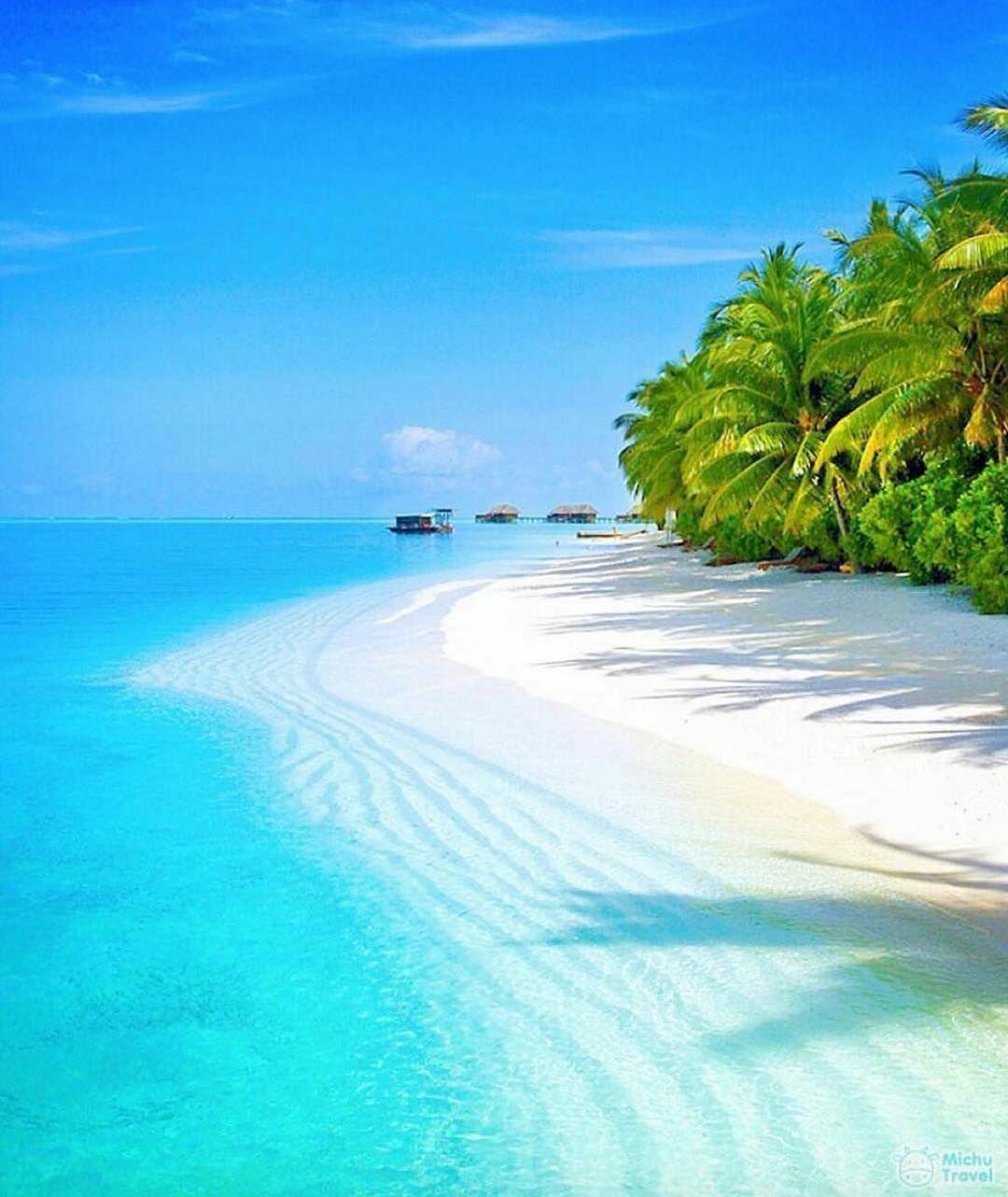 Maldives Beach: Beach, Maldives, Honeymoon