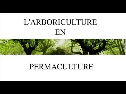 Réseau de permaculture d\u0027Alsace Vidéo  l\u0027arboriculture en