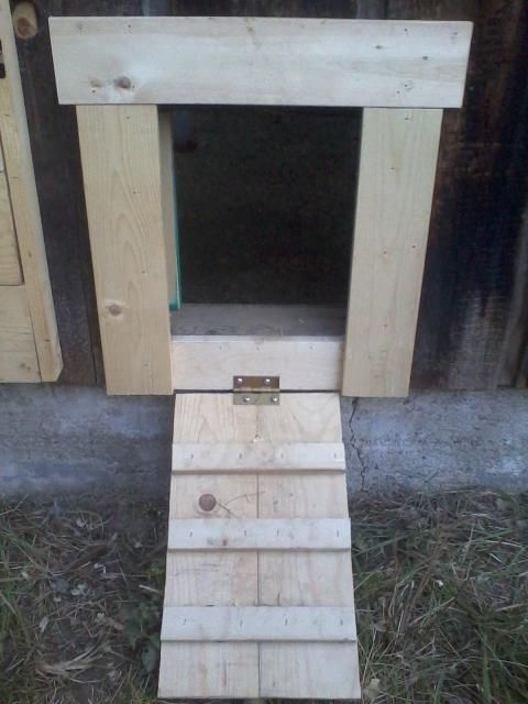 Chicken Coop Chicken Door Ramp Serves As Door Opens Out Locks From Inside Http Www Backyardchickens C Inside Chicken Coop Chicken Diy Chickens Backyard