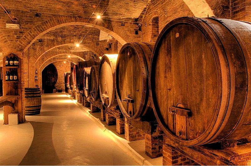 Old Wine Seller Weinkeller Piemont Reisen