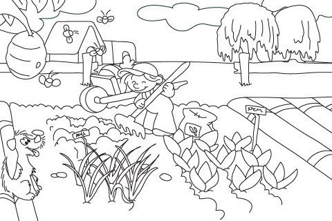 Vegetable Garden Coloring Pages Garden Coloring Pages