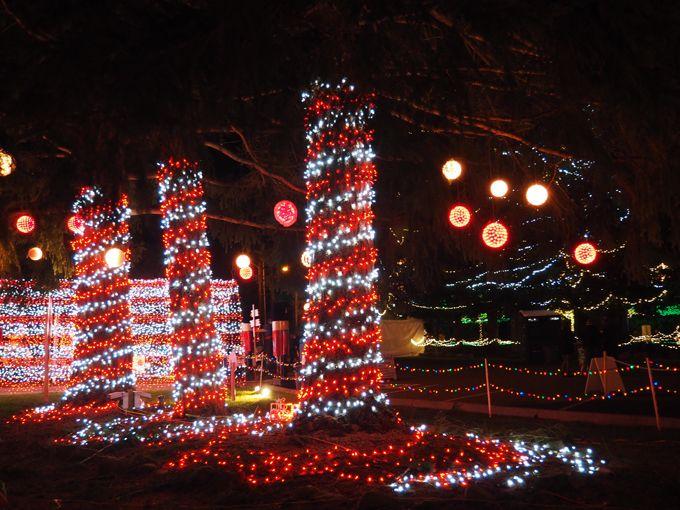 Christmas Light Service Near Me