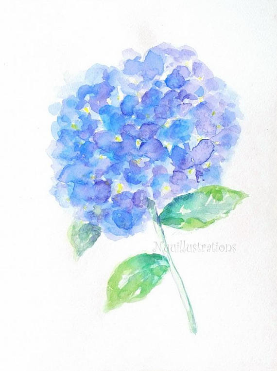 9x12 Original Watercolor Painting Blue Hydrangea Flower Floral