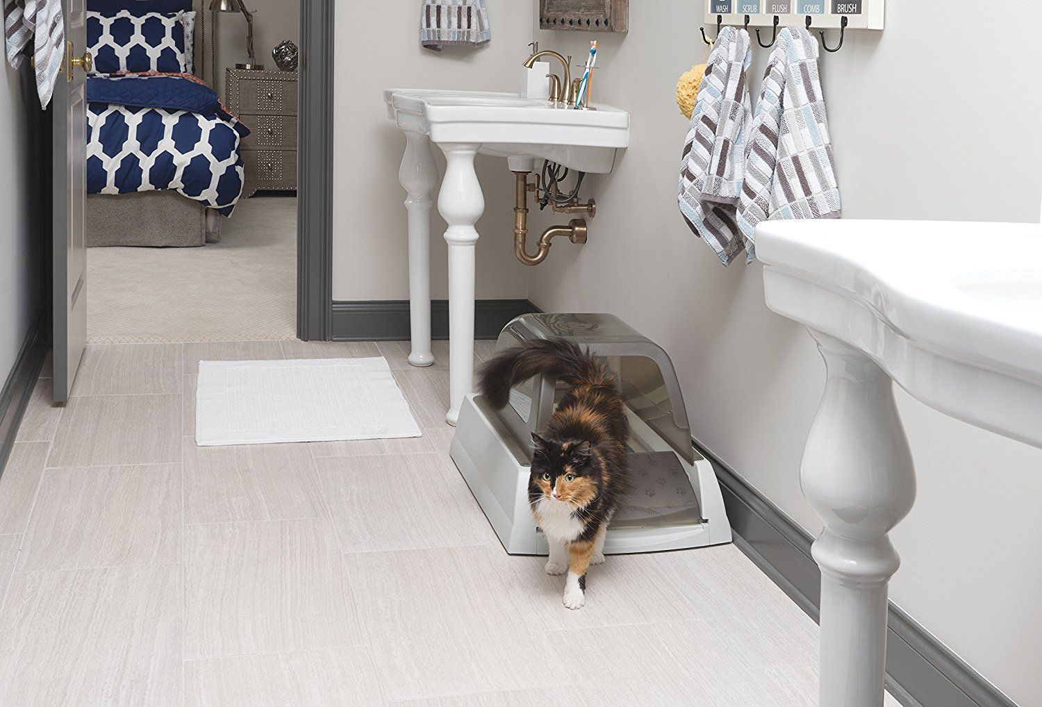 10 Best Litter Boxes For Cats To Buy In March 2020 Buyer S