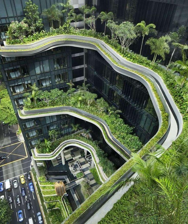 Grün statt Grau: Pflanzen erobern die Architektur - Lars Goldenbogen - Grün statt Grau: Pflanzen erobern die Architektur - Lars Goldenbogen -