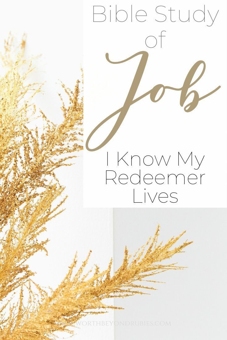 Bible study of job and his awesome faith i know my