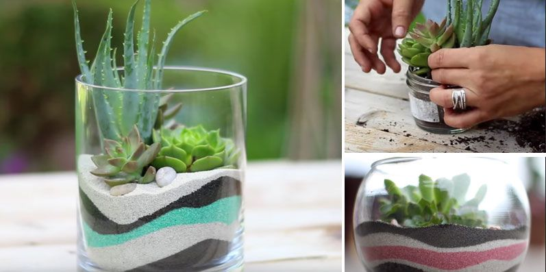 Planting Succulents In Rocks