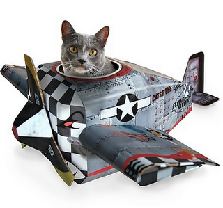 Mini Aerotrastornados: Avión gatuno!!!