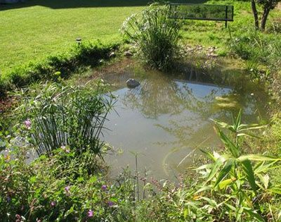 cr er une mare naturelle dans son jardin ext rieur mare rivi re de jardin bassins. Black Bedroom Furniture Sets. Home Design Ideas